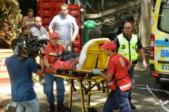 葡萄牙:13个死亡下降棵马德拉